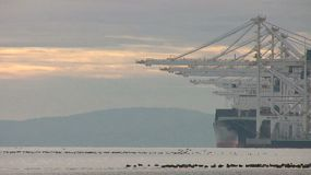 Scores of birds take flight in front of large ships and davits in the port.