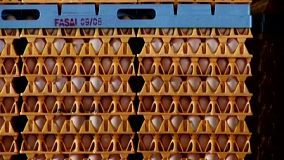 Stacks of eggs in crates wait to be shipped off to stores to be sold.