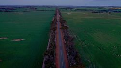 Drone view flying above a straight road cutting through green fields on an Australian farm, in the evening approaching dusk.