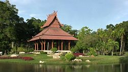 A zoom out shot of a charming Asian style sala, or rest place by a pond in Bangkok, Thailand.