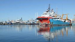 Boats docked in Fremantle Fishing Boat Harbour, Western Australia.