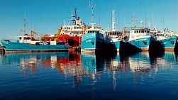 Boats docked in Fremantle Fishing Boat Harbour, in Western Australia, on a still winter morning.