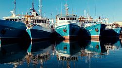 Row of boats docked close together, reflecting off the still water, in Fremantle Fishing Boat Harbour, in Western Australia.