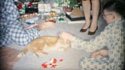 A cute little cat plays with the toys on Christmas Day morning in Akron, Ohio in 1963.