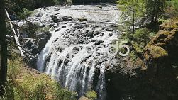 A shot of beautiful Englishman River Falls on Vancouver Island in British Columbia, Canada.