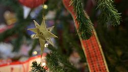 Decorations on a christmas tree, with a golden star and red ribbon.