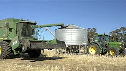 A header offloading a load of canola (rapeseed) into a field bin on an Australian farm.
