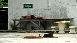 Two lonely dogs rest in front of a half naked lonely old Asian homeless man laying on a bench in Bangkok, Thailand.