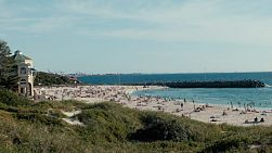 Looking at Cottesloe Beach in Western Australia, from across a foliage covered dune.