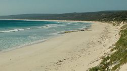 Looking down the beach at Hamelin Bay in Australia's South West.