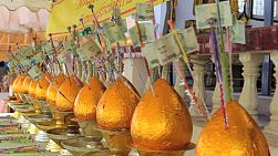 Gold money trees wait patiently for more money to come from Thai Buddhists making merit at the temple in Hua Hin, Thailand.