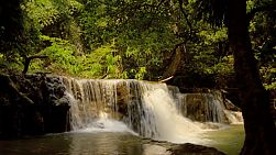 Looking at a small waterfall from behind trees in jungle, part of the Huay Mae Khamin waterfalls in Kanchanaburi, Thailand.