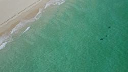 Bird's eye view of waves washing ashore on a windy day, onto a sandy beach in Perth, Western Australia.
