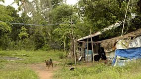 A dog in front of a rundown house in rural thailand.
