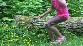 A cute little Thai girl bends down beside a log in the forest to admire and pick some pretty yellow flowers.