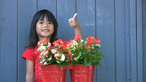 A cute little Asian girl waters her pretty red flowers in the spring.