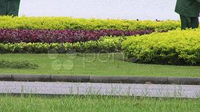 Several Asian ladies sweep the grass and flower beds in a lovely park in Bangkok, Thailand.