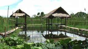 Two lovely bamboo huts on stilts stand over a pond near a marsh in Thailand.