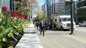 A busy businessman walks past spring tulips in gorgeous downtown Vancouver in March.