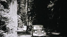 Old cars driving through the famous Redwood Forest in northern California in 1940.