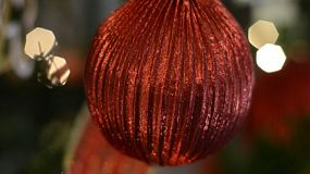 Close-up shot of a red bauble hanging on a christmas tree.