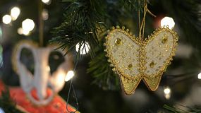 Close-up of gold butterfly decorations on a christmas tree.