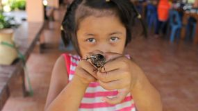 A cute little Asian girl plays with a large beetle bug right before putting it in the fry pan to eat it for her snack!
