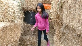 A cute little 9 year old Asian girl has fun walking through a scary Halloween hay maze on a farm in the fall.