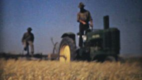 Farmers harvesting golden ripe wheat from their fields in the fall of 1940.