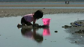A close up shot of a cute little Asian girl having fun filling up her pink bucket with sand on a beautiful summer day.