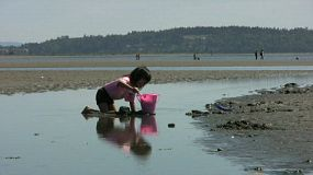 A cute little Asian girl having fun filling up her pink bucket with sand on a beautiful summer day.