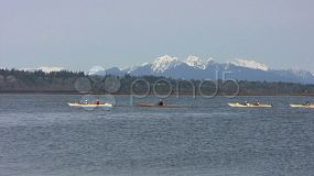 A group of happy kayakers out for a paddle on a lovely spring day.