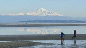 A couple of kids enjoy spending time walking on the beach at Boundary Bay with Mount Baker rising in the background.