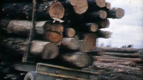 A logging transport truck prepares to move timber to the mill in 1967.