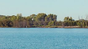 Looking across the Swan River in Perth, Western Australia, with trees lining the bank on the opposite side.