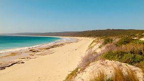 Looking from the top of a dune, down along the beach at Hamelin Bay in Australia's South West.