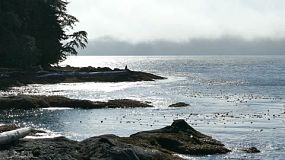 A man enjoys spending time by the Pacific ocean as the fog and tide roll in on a gorgeous summer afternoon!