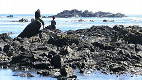 A mother and daughter spend time exploring and enjoying the rugged Pacific coastline of Ucluelet on Vancouver Island.