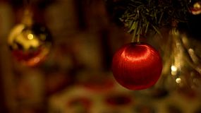 A red ball ornament hanging on a christmas tree, with other decorations in the background.