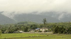 Thai farmers working in their fields and rice paddies in the shadow of a cloud covered mountain, with trees and houses.