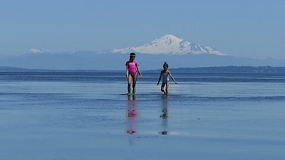 Two cute little Asian sisters enjoy spending time together walking in the low tide at the beach on a gorgeous sunny summer day.