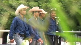 A group of 4 Asian cowboys head into the barn to check on their cows.