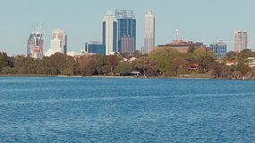 View from the northeast looking at the Perth City skyline above trees lining the banks of the Swan River.