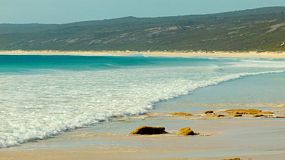 Looking down the beach as small waves wash ashore at Hamelin Bay in Australia's South West.